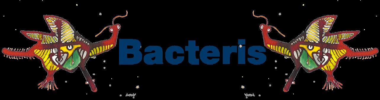 bacteris_titul_2